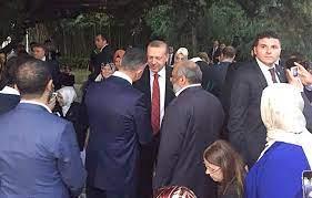 Sedat Peker'in dişi kan gördü, Soylu'yu bitirirse Erdoğan'ı da bitirir'  Kronos News   Bağımsız haber sitesi...